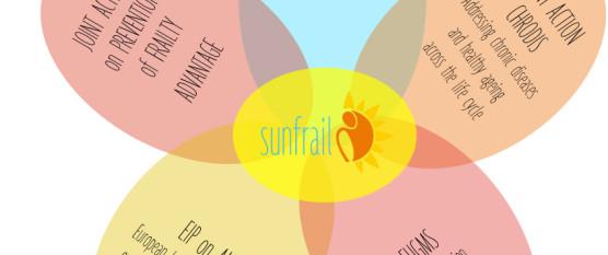 sunfrail synergies